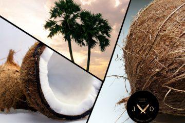 coconut καρυδα οφελη προιοντα