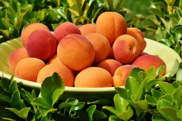 Βερίκοκο: ένα φρούτο με πλούσια θρεπτική αξία Από την Κάλλια Θ. Γιαννιτσοπούλου Κλινική διαιτολόγο– διατροφολόγο, ΜSc, MBA, SRD Υπεύθυνη του Επιστημονικού Διαιτολογικού Κέντρου ΄Σώμα Υγιές' www.somaygies.gr